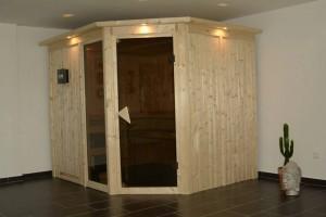Sauna mit 9KW Bio Kombiofen:                          - klassische finnische Sauna: heiß und trocken -  Soft-Dampfbad: feuchtwarm - Kräuterdampf-Kur -   Family-Bad: normal feucht und warm (auch für Kinder geeignet!)